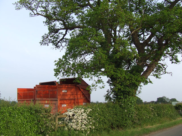 Farm trailers beside a tree