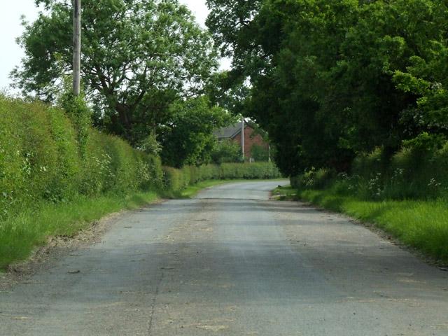Coole Lane