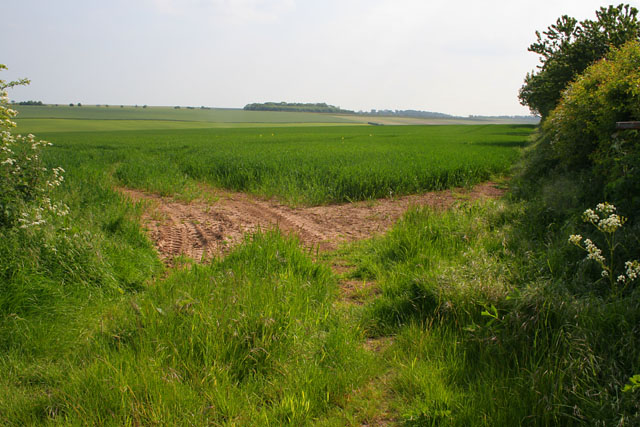 Farmland between Dovendale and Maltby