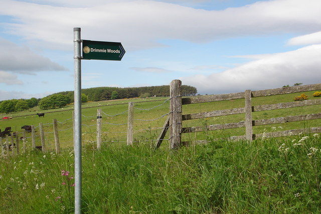 Footpath to Drimmie woods near Hill of St Fink