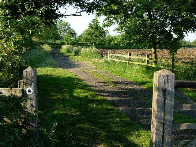Bridleway near Patford Bridge