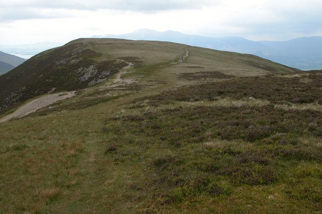 Narrow Moor