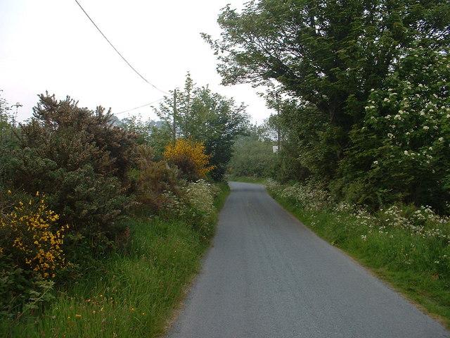Lane near Haulfron