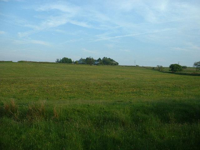 Llwyngwnadl Uchaf farm