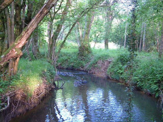 Scotley Brook near Woodbrooke Farm