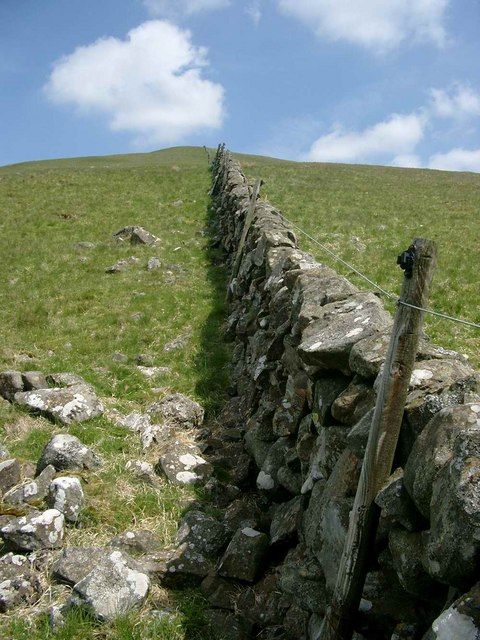 Wall on the SW slopes of Dunool