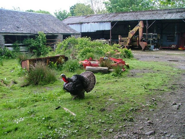 Farmyard, Meall Min