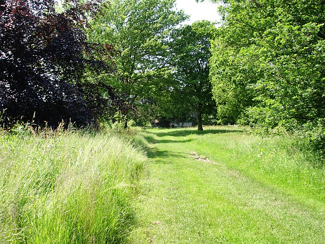 Grass track to Wichling church
