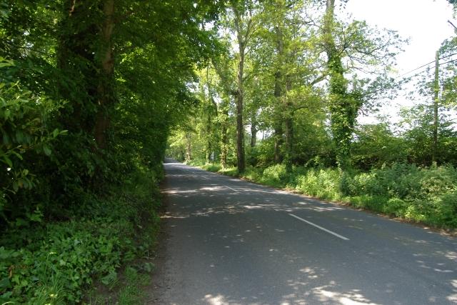 Marley Lane, Exmouth