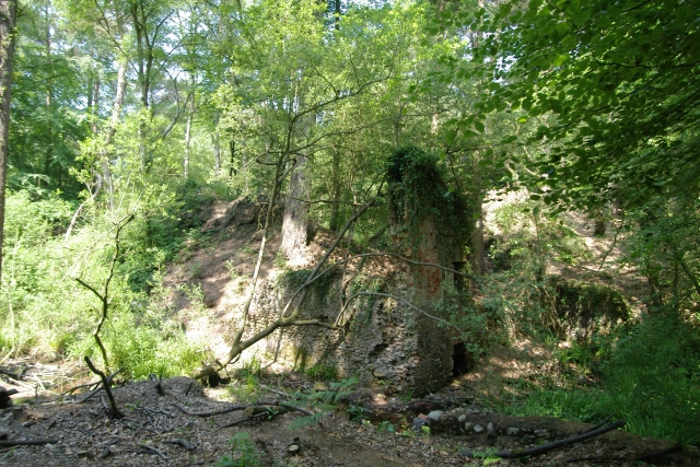 Building remains, Squabmoor Plantation