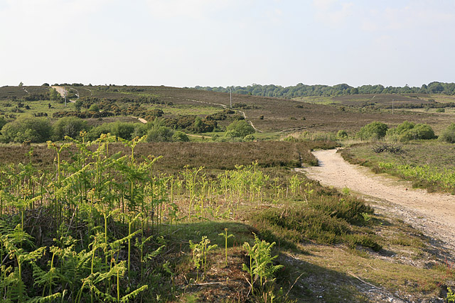 Path climbing Turf Hill to Burley