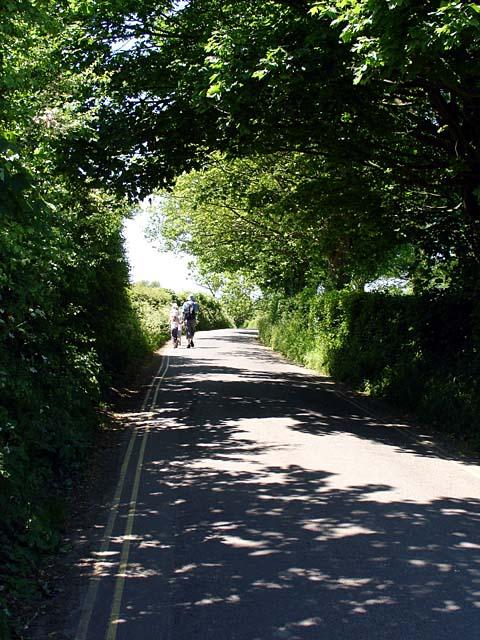 Stone Down Lane