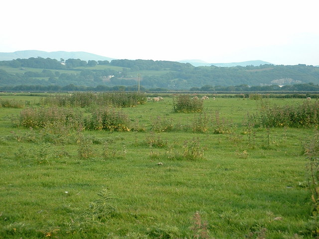 Farmland on The Traeth