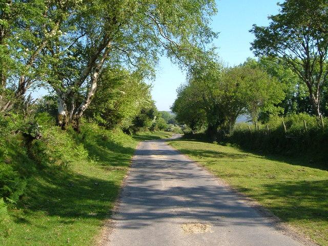 Lane to West Stoke farm