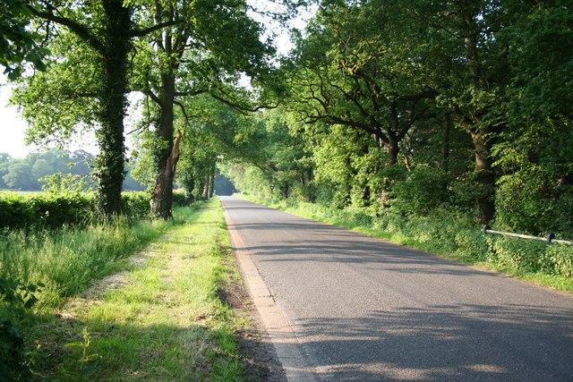 Southern Lane, Morton
