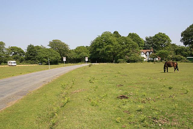 Rhinefield Road looking towards Ober Lodge, Brockenhurst