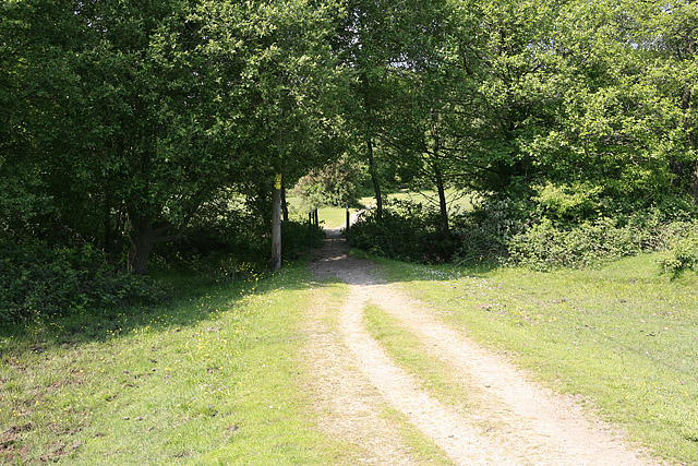 Path and footbridge linking South with North Weirs, Brockenhurst