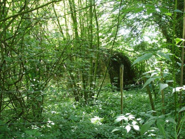 Nissen hut in Endings Wood