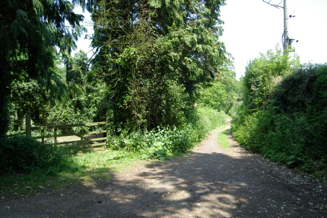 Top of Bears Lane, Knowle