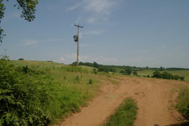 Dusty field entrance, Knowle