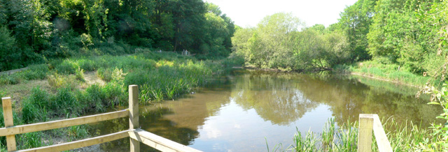 The Old Mill Pond, The Dingle, Llangefni, Anglesey.