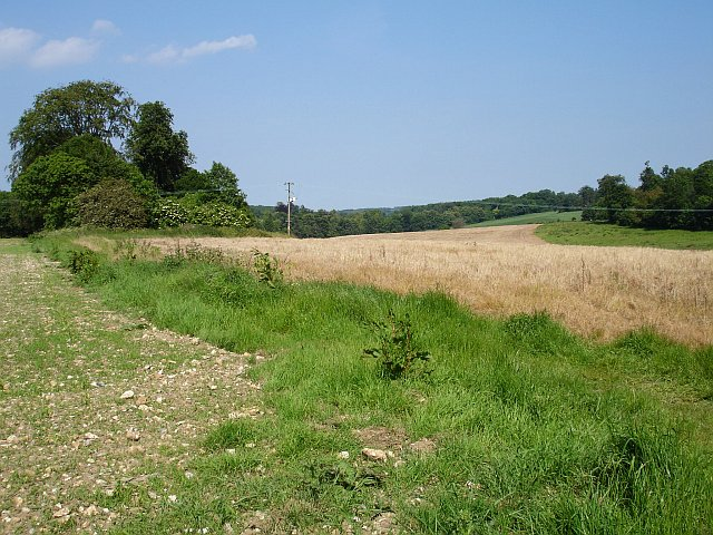 Farmland North of Seed Road