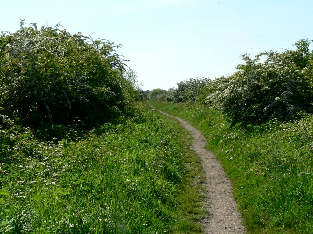 The Hudson Way to Market Weighton