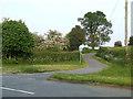 SJ6442 : Junction leading to Newtown farm by Nigel Williams