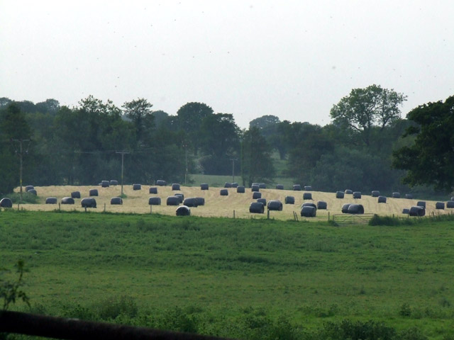 Wrapped bales awaiting collection