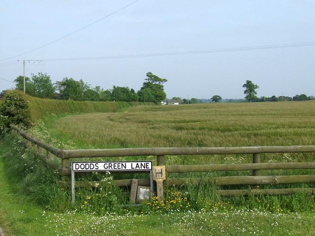 Field on Dodds Green Lane