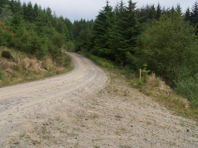 Dunnoon, Bullwood - Bishop's Glen Track