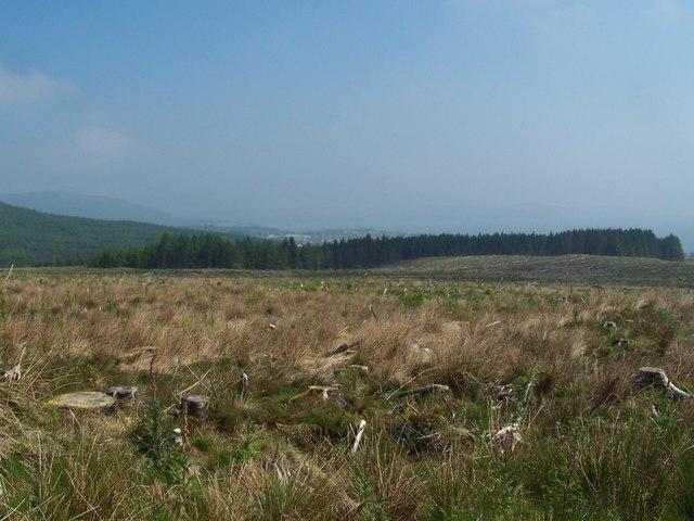 Dunoon, Bullwood - Bishop's Glen track, view.