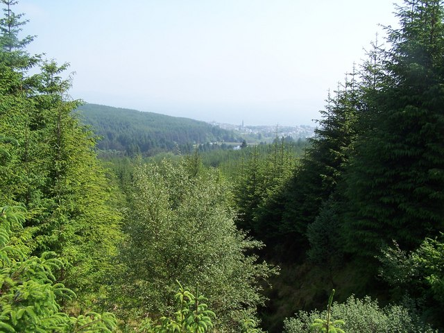 Dunnoon, Bullwood - Bishop's Glen Track, View