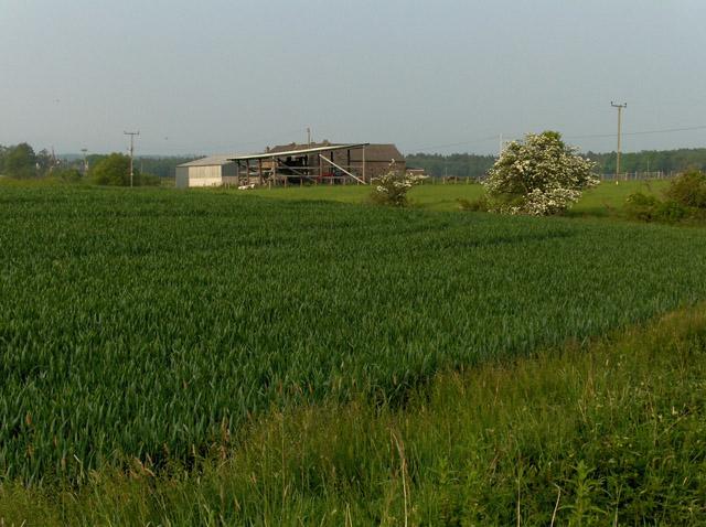 Robertson Lane Farm
