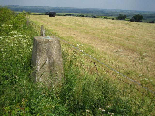 OS Triangulation Pillar at Waddesdon Hill