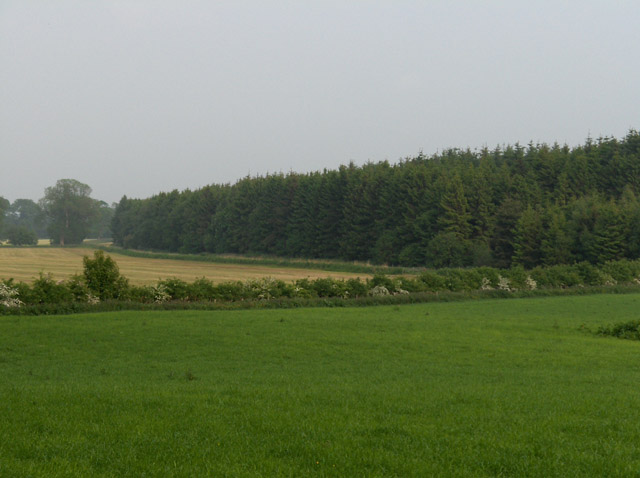 Farmland and forest at Blair Drummond