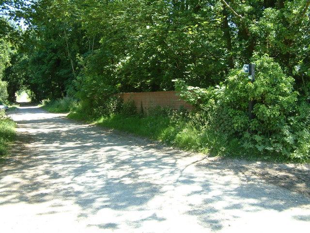 Road close to Standlynch Farm