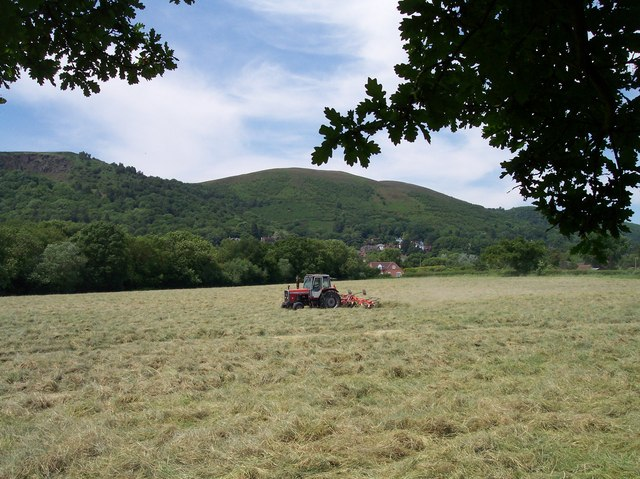 Spreading Cut Grass near Mayall's Coppice