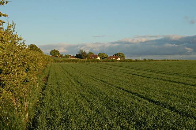 Farmland by Abercrombie