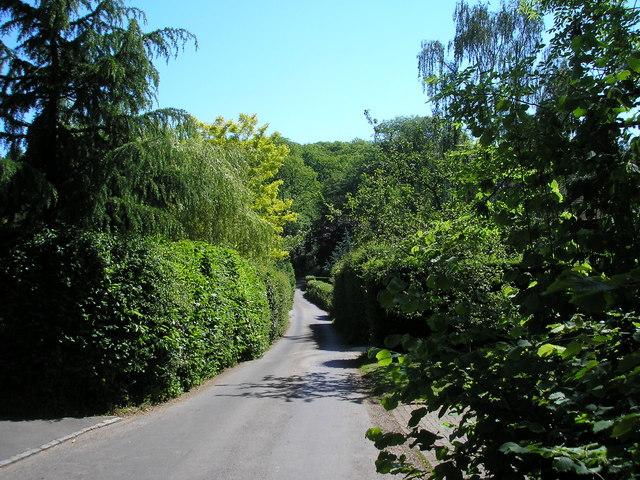 Puddledock Lane, near Chartwell, Kent
