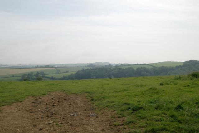 Field near Tilland Road Farm