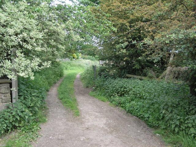 Footpath To Blaxton Common