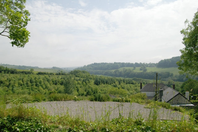 Woods from north west of Tredinnick