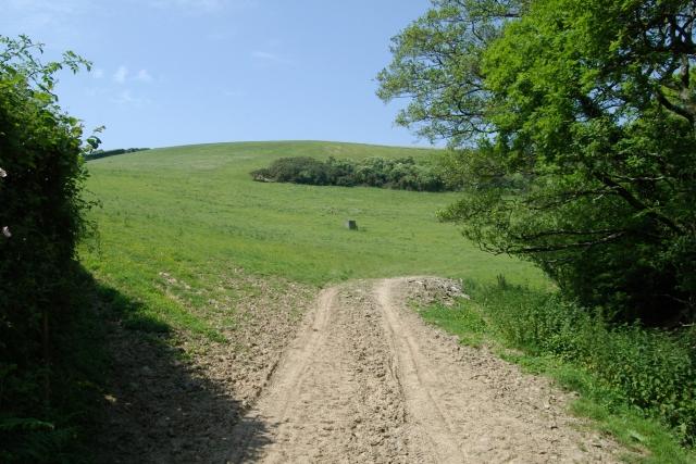 Field east of Tredinnick
