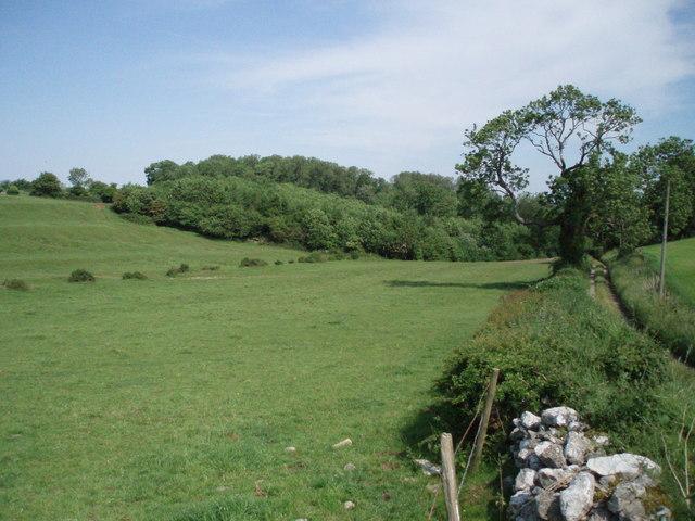 Lane and Chewton Wood