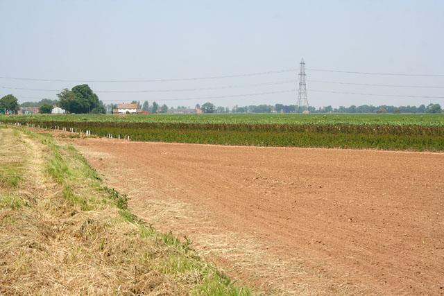 Farmland near Spalding