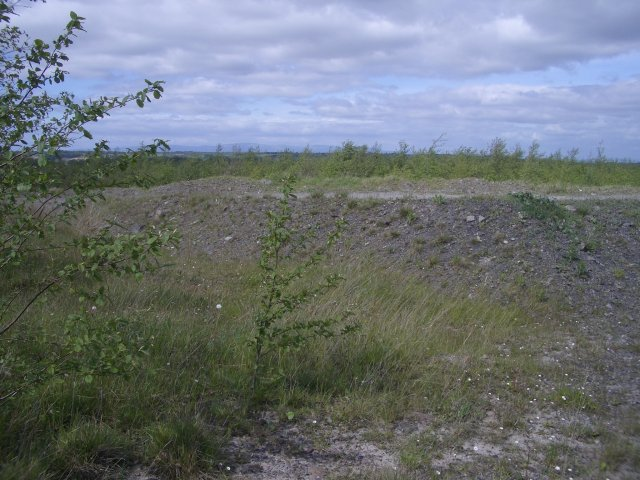 Replanted opencast workings