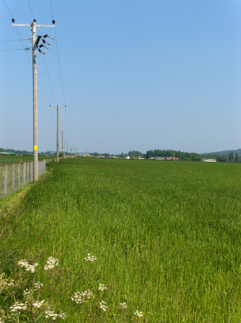 Farmland near Gargunnock