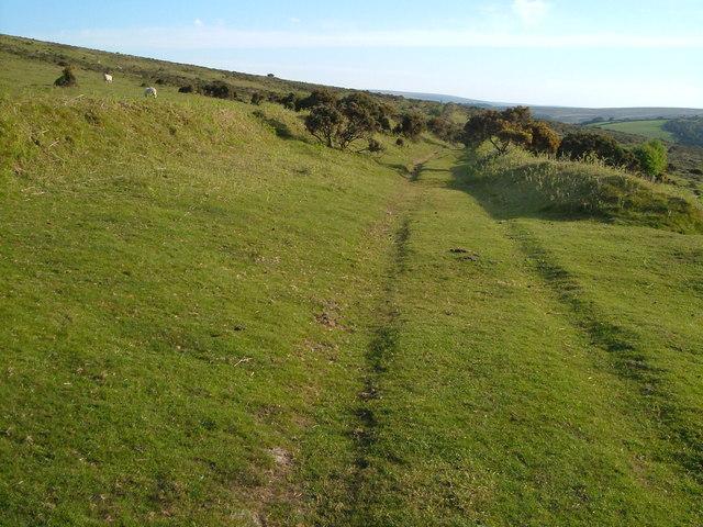 Two Moors Way near Cator