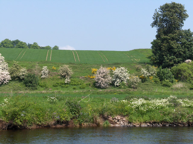 Farmland at Row